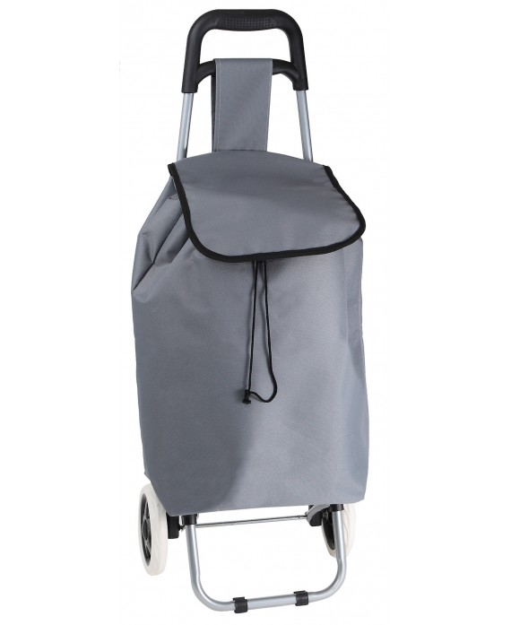 SAC CHARIOT TAUPE A ROULETTES